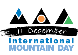 international mountain day logo