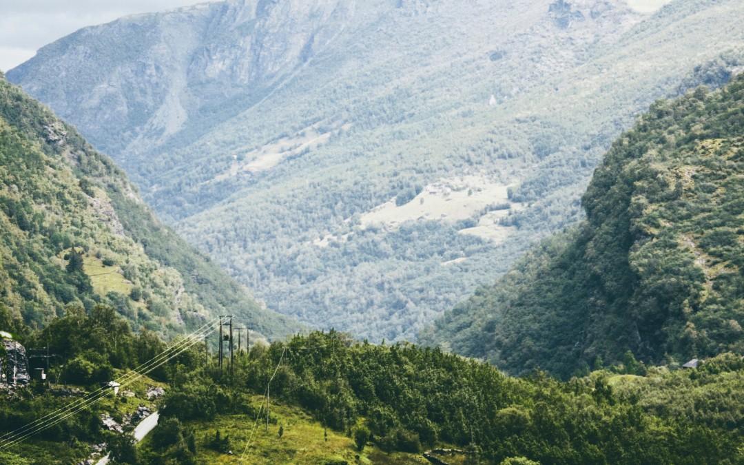 Undersøkelse Global Biodiversity Assessment